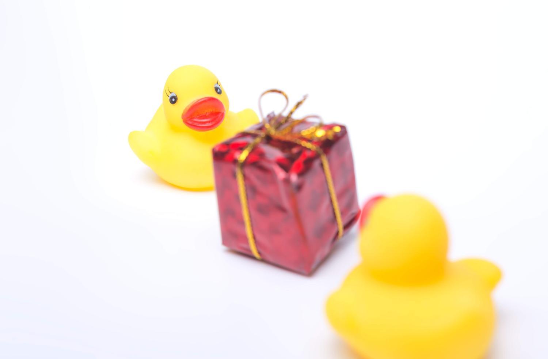 自分より大きいプレゼントを大好きな黄色のアヒルのがぁくんにあげる黄色のアヒルのぴぃちゃん